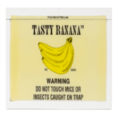 CATCHMASTER TASTY BANANA GLUE box of 72 pest management supply